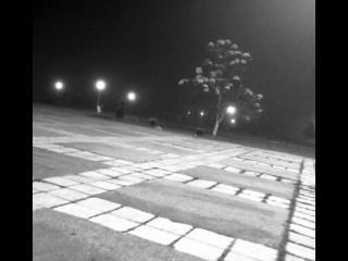 Bucuresti. Parcul Politehnicii.Toamna si ceata