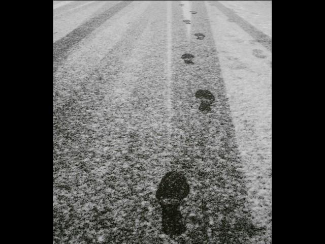 Ninsoare. Desene pe asfalt. Pasi