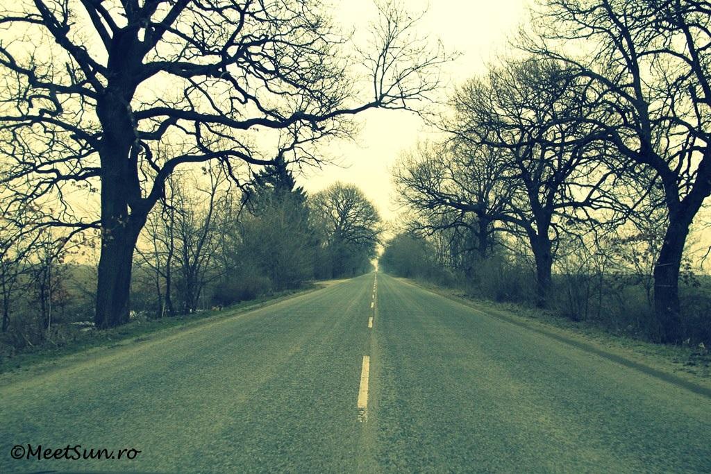 un drum pustiu in toamna tarzie